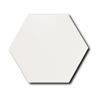 Scale Hexagon White