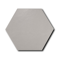 Scale Hexagon Grey