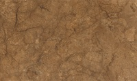 Rotterdam brown wall 02 30x50 см